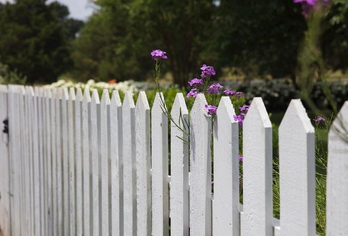 Obrázek: Dřevěné ploty patří k nejoblíbenějším, ale vyžadují pravidelnou údržbu.